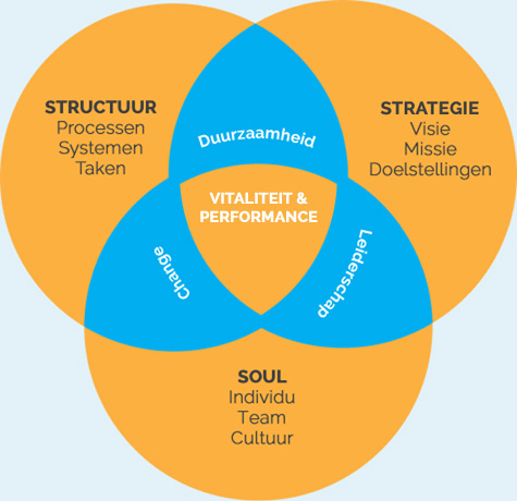 vitaliteit organisaties